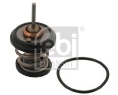 Thermostat With Seal 2.0 TFSi